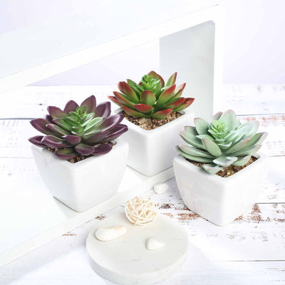 Set of 3 | Assorted Fake Succulents in Pot | 4'' Assorted Echeveria Artificial Plants with Pots
