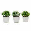 Assorted Fake Succulents in Pot | 4'' Assorted Green Echeveria Artificial Plants with Pots