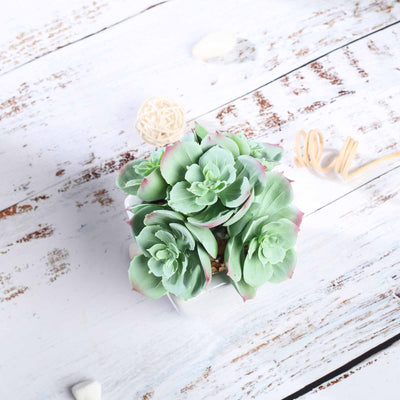 Set of 3 | Assorted Fake Succulents in Pot | 5'' Assorted Mini Echeveria Artificial Plants with Pots