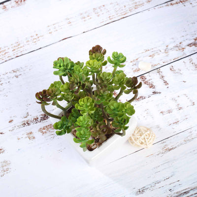 Set of 3 | Assorted Fake Succulents in Pot | 7'' Assorted Crassula Artificial Plants with Pots