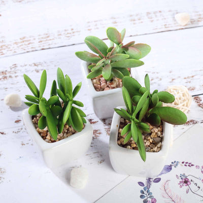 Set of 3 | Assorted Fake Succulents in Pot | 3'' Assorted Green Mini Artificial Plants with Pots