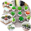 "Set of 3 | Assorted Fake Succulents in Pot | 7"" Assorted Cactus Artificial Plants with Pots"