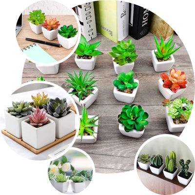 Set of 3 | Assorted Fake Succulents in Pot | 5'' Assorted Echeveria or Grape Artificial Plants with Pots