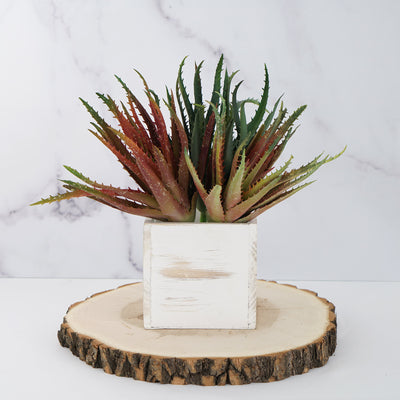 "Set of 3 | Multi Colored Fake Succulents | 12"" Aloe Cameronii Decorative Artificial Plants"