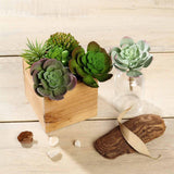 "Set of 3 | Multi Colored Fake Succulents | 6"" Echeveria Stem Decorative Artificial Plants"