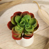"Multi Colored Fake Succulents | 3"" Echeveria Orion Decorative Artificial Plants"