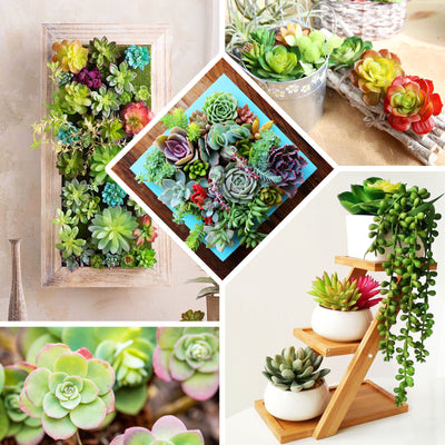 "Set of 3 | Multi Colored Fake Succulents | 4"" Mini Jelly Bean Decorative Artificial Plants"