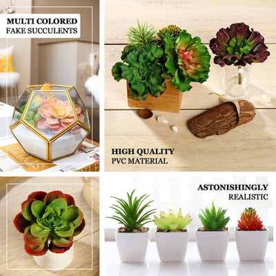 "Set of 3 | Multi Colored Fake Succulents | 3"" Echeveria Orion Decorative Artificial Plants"