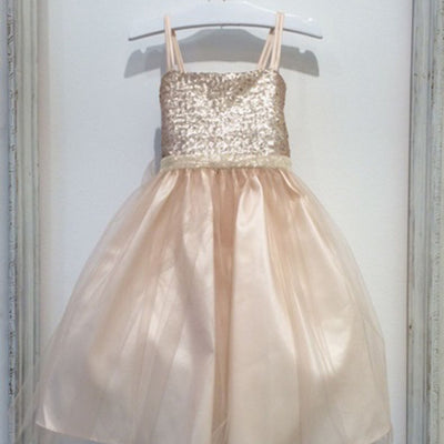 Twinkling Sequined Bodice and Tulle Overlay Skirt Dress - Champagne