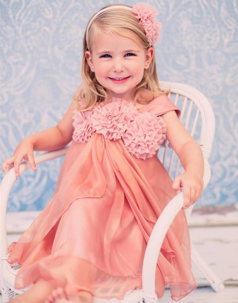 Shimmery Chiffon Flower Girl Dress Dress Mauve Party Dress Special Occasion Dress