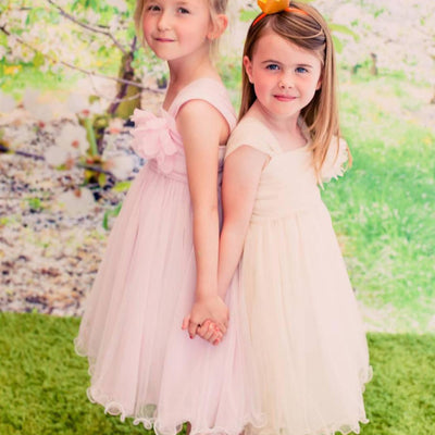 Flower Girl Dress Mesh and Taffeta Overlay Dress Dress White Party Dress Special Occasion Dress