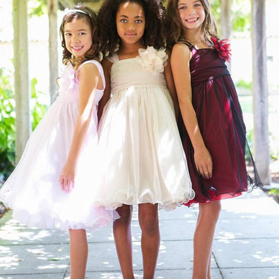 Flower Girl Dress Mesh and Taffeta Overlay Dress Dress Pink Party Dress Special Occasion Dress