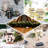 5 Pack | 5 inch Black/Gold Acrylic Wedding Table Number Stands, Hexagon Table Sign Holders