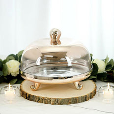 "2-Piece Set | 11"" Champagne Ombre Glass Cake Dome with Stand Centerpiece"