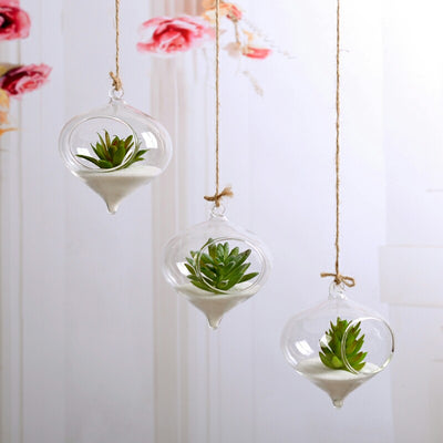 "Set of 6 | 5"" Air Plant Glass Terrarium Morning Dew Drop Hanging Plant Holders"