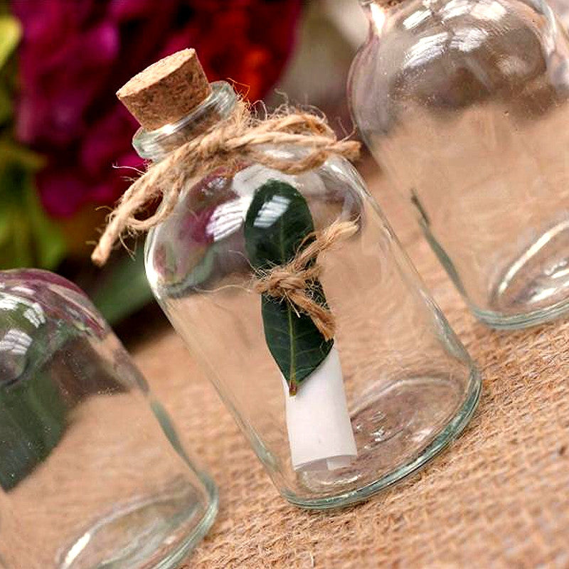 12 Pack Wish Keeper Favor Clear Bottle Party Wedding Favors
