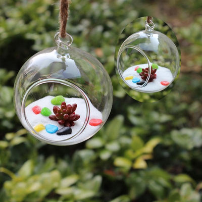 "Set of 4 | 4"" Air Plant Holders Hanging Glass Artificial Terrariums Plants"
