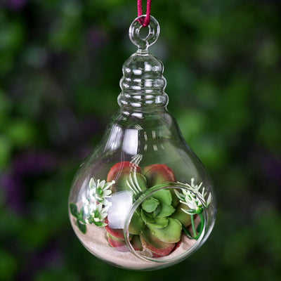 "Set of 6 | 5"" Air Plant Glass Artificial Terrariums Plants Light Bulb Hanging Plant Holders"