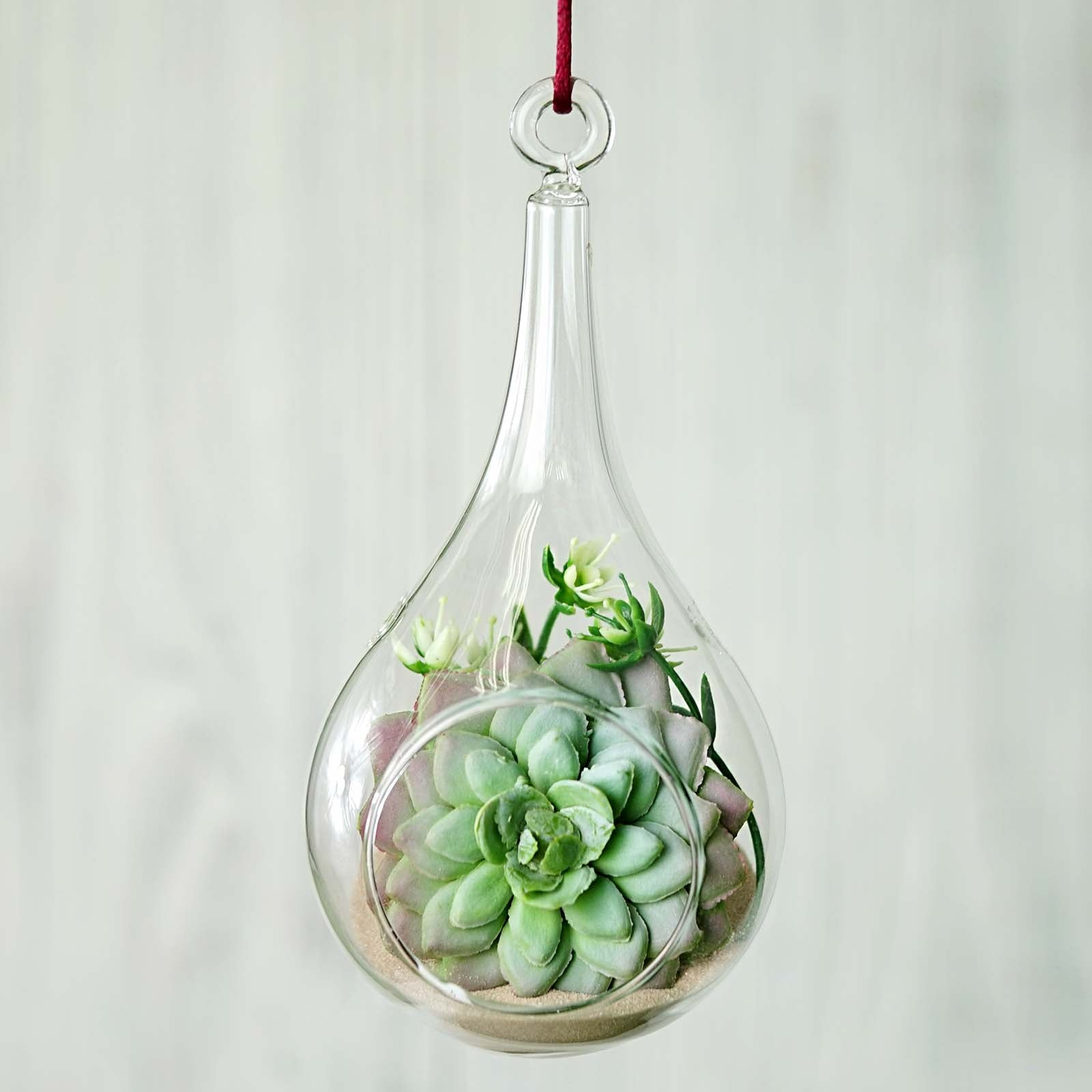 Set Of 6 6 Air Plant Glass Artificial Terrariums Plants Free Falling Teardrop Hanging Plant Holders Tableclothsfactory