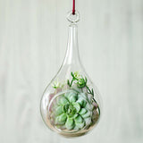 "Set of 6 | 6"" Air Plant Glass Artificial Terrariums Plants Free-falling Teardrop Hanging Plant Holders"