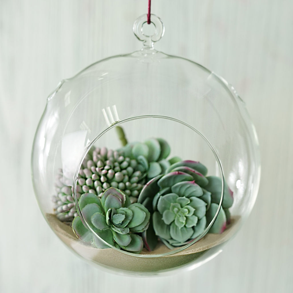 Set Of 4 7 Air Plant Glass Terrarium Globe Hanging Plant Holders Tableclothsfactory