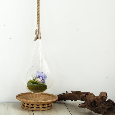 "15"" Teardrop Hanging Glass Terrarium With Rope 