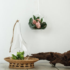 "2 Pack | 12"" Teardrop Hanging Glass Terrarium With Rope 