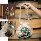 3 Pack | Flower Shaped Glass Wall Vase | Indoor Wall Mounted Planters | Hanging Terrariums