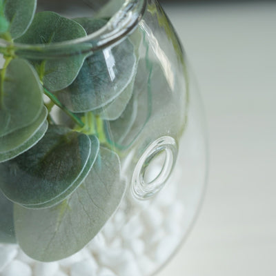 3 Pack | Egg Shaped Glass Wall Vase | Hanging Glass Terrarium | Indoor Wall Planters