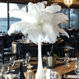 "12 Pack | 24""-26"" White Natural Plume Ostrich Feathers Centerpiece"