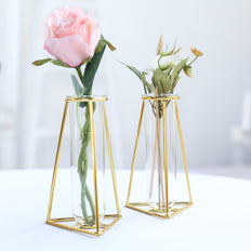 Test Tube Vase | Geometric Vase | Glass Flower Vase