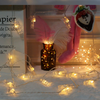 7 Ft 20 LED Warm White Photo Clips Battery Operated String Lights