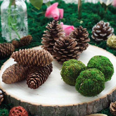 9 Pack Natural Pine Cones and Moss Balls Assorted Potpourri Vase Fillers Bowl DIY Table Decorations