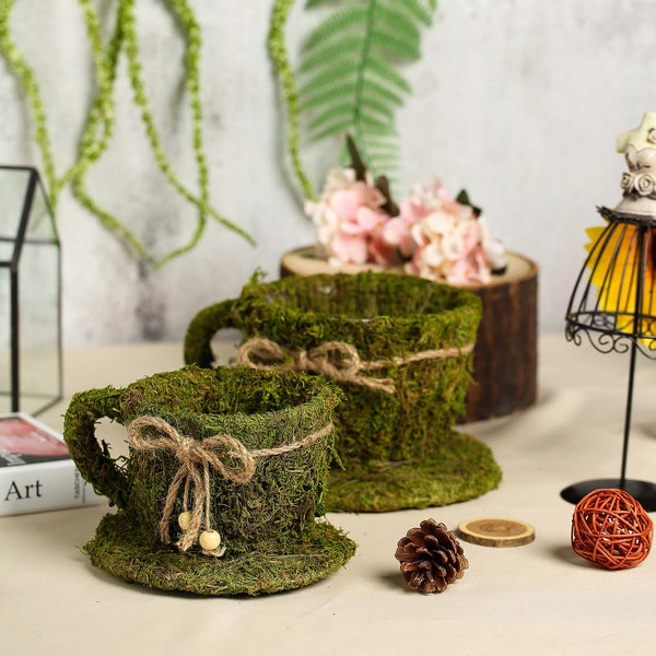 "Set of 2 | Preserved Moss Teacup Planter Box with Natural Braided Twine Bow - 5"" & 4"""