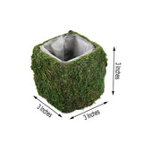 "4 Pack | Square Preserved Moss Planter Boxes | Moss Covered Flower Basket Planter with Inner Lining | 3"" x 3"""