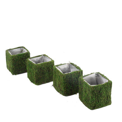 4 Pack | Square Preserved Moss Planter Boxes | Flower Pot