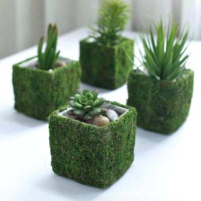 "4 Pack | Square Preserved Moss Planter Box | Moss covered Planters with Inner Lining | 4"" x 4"""