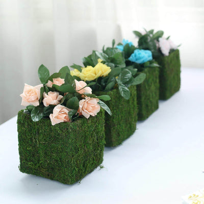 "4 Pack | Square Preserved Moss Planter Box | Moss covered Planters with Inner Lining | 6"" x 6"""