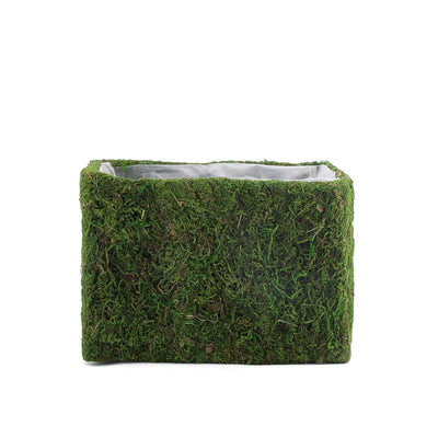 2 Pack | Square Preserved Moss Planter Boxes | Flower Pot