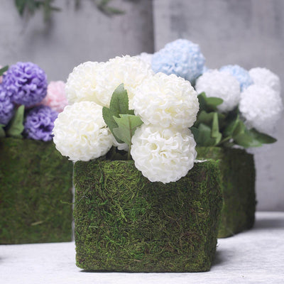 Set of 5 | Square Preserved Moss Planter Boxes | Moss Covered Flower Basket Planter with Inner Lining | 3"