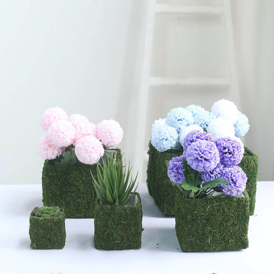 Set of 5 | Square Preserved Moss Planter Boxes | Flower Pot