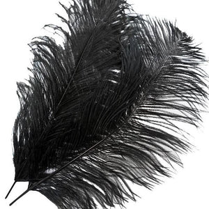 "12 PCS 13""-15"" Black Fabulous Natural Ostrich Feathers"
