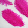 "12 Pack | 13""-15"" Fushia Natural Ostrich Plumes Wholesale"