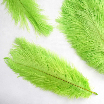 "12 Pack | 13""-15"" Green Natural Plume Ostrich Feathers Centerpiece"