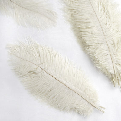 "12 Pack | 13""-15"" Ivory Natural Plume Ostrich Feathers Centerpiece"