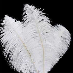"13""-15"" Fabulous Natural Ostrich Feathers-12PCS - White"