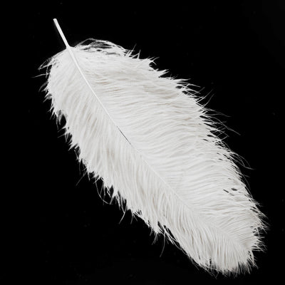 "Set of 12 | 24""-26"" White Natural Plume Ostrich Feathers Centerpiece"