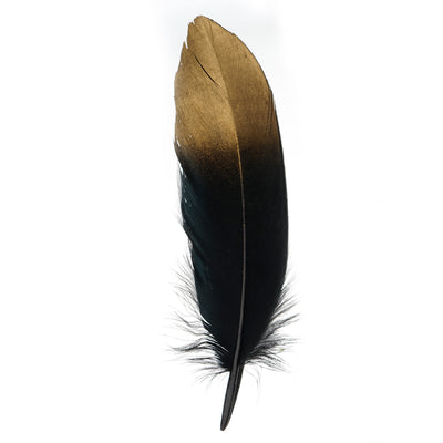 30 Pack | Metallic Gold Dipped Black Real Goose Feathers | Craft Feathers for Party Decoration