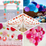 "6 Pack 10"" White Paper Tissue Fluffy Pom Pom Flower Balls"