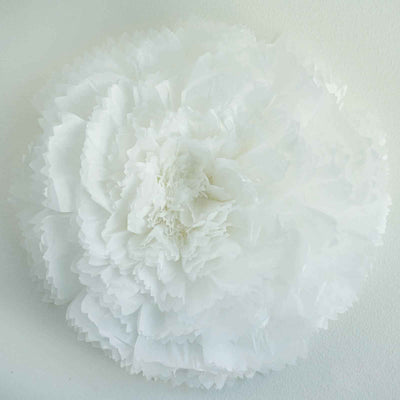 "20"" Carnation White 3D Wall Flowers Giant Tissue Paper Flowers"